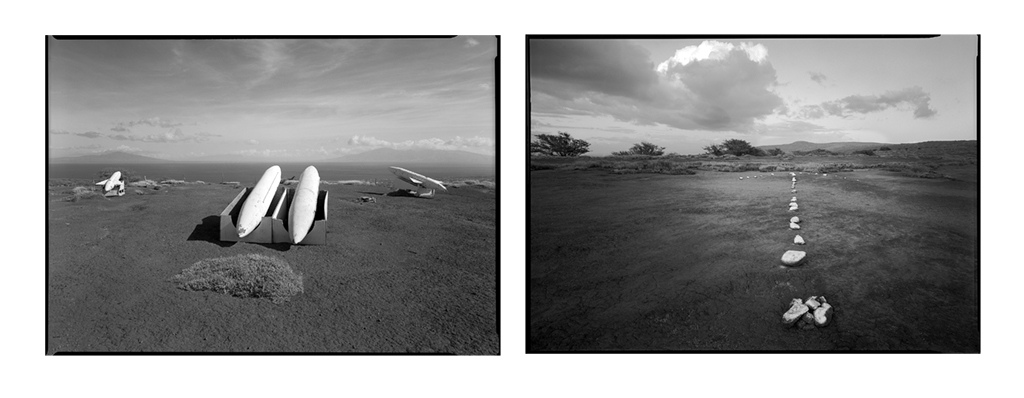 90's panel © David Ulrich