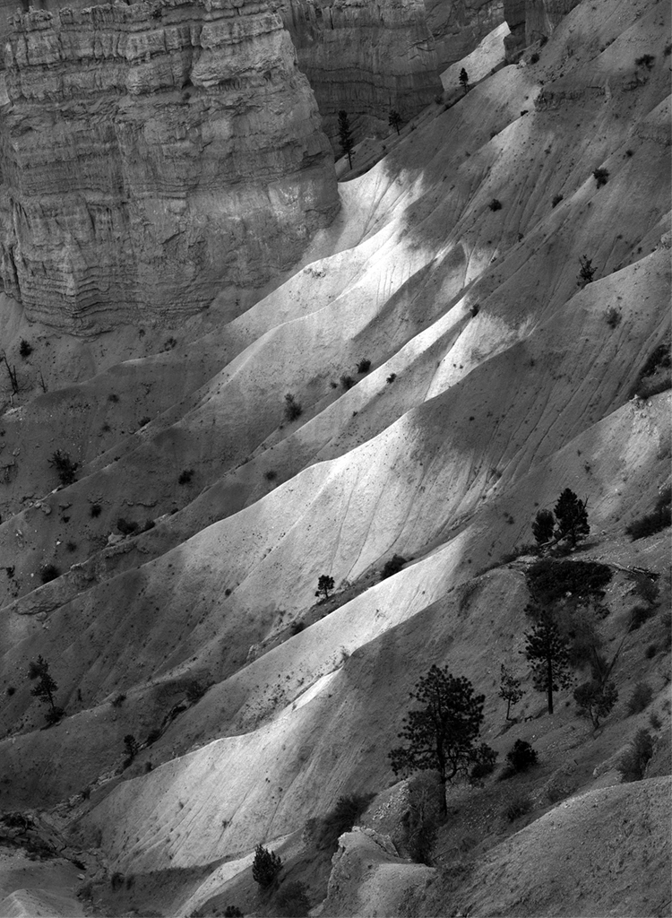 Bryce Canyon © David Ulrich